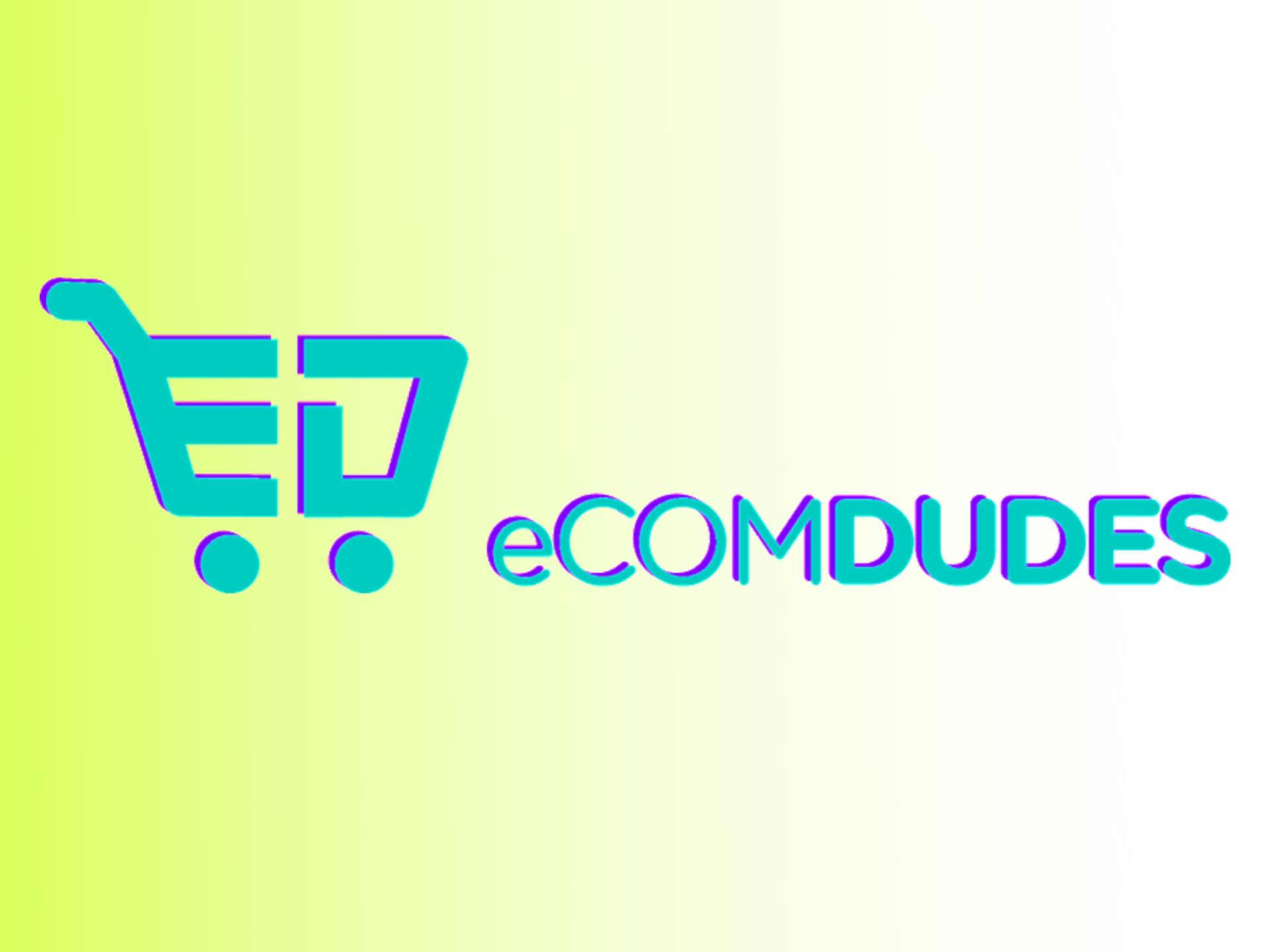 dan-dasilva-ecom-dudes-review